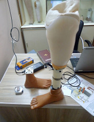 The New Age of Prosthetics