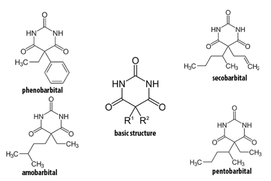 Barbiturate family. Note their common features and difference. Source: Warrick Ma
