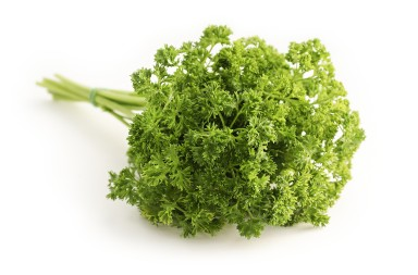 parsley-1665402_1920